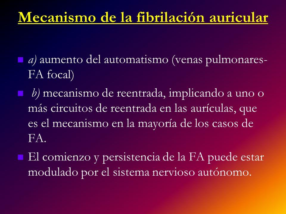 Mecanismo de la fibrilación auricular