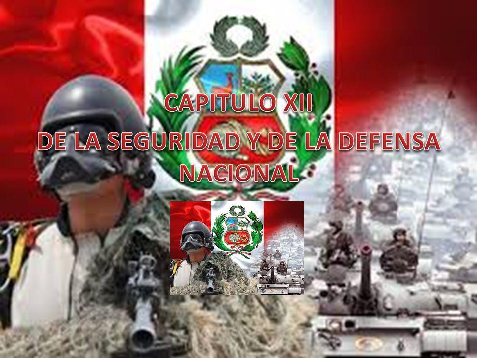 CAPITULO XII DE LA SEGURIDAD Y DE LA DEFENSA NACIONAL