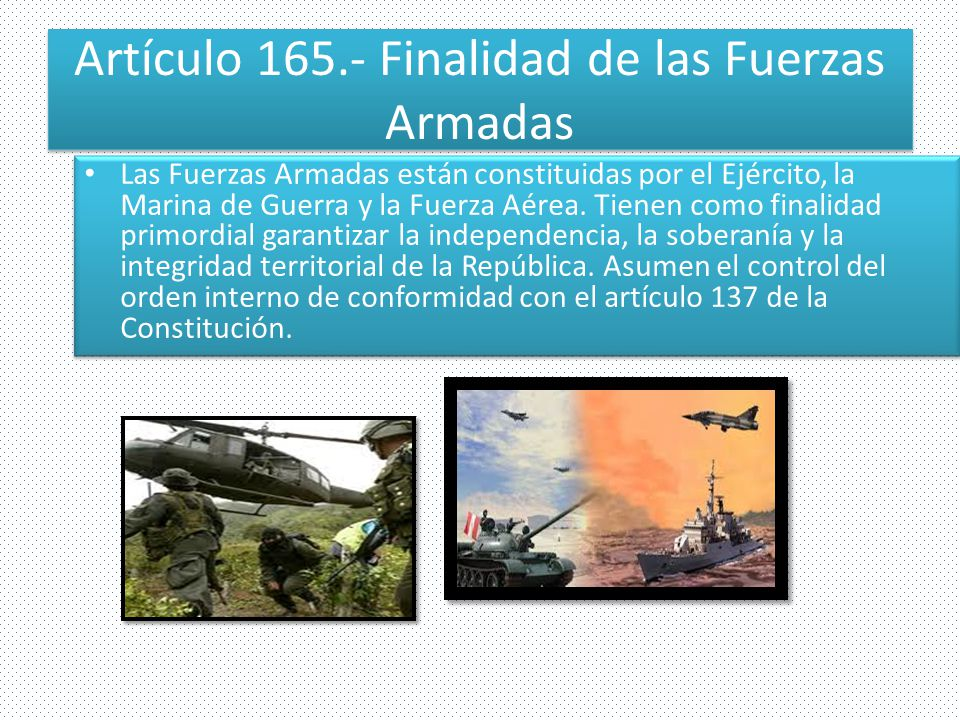 Artículo 165.- Finalidad de las Fuerzas Armadas