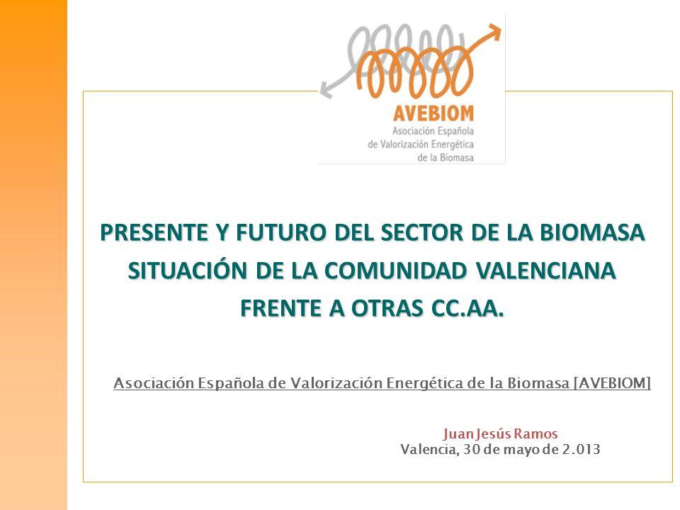 PRESENTE Y FUTURO DEL SECTOR DE LA BIOMASA