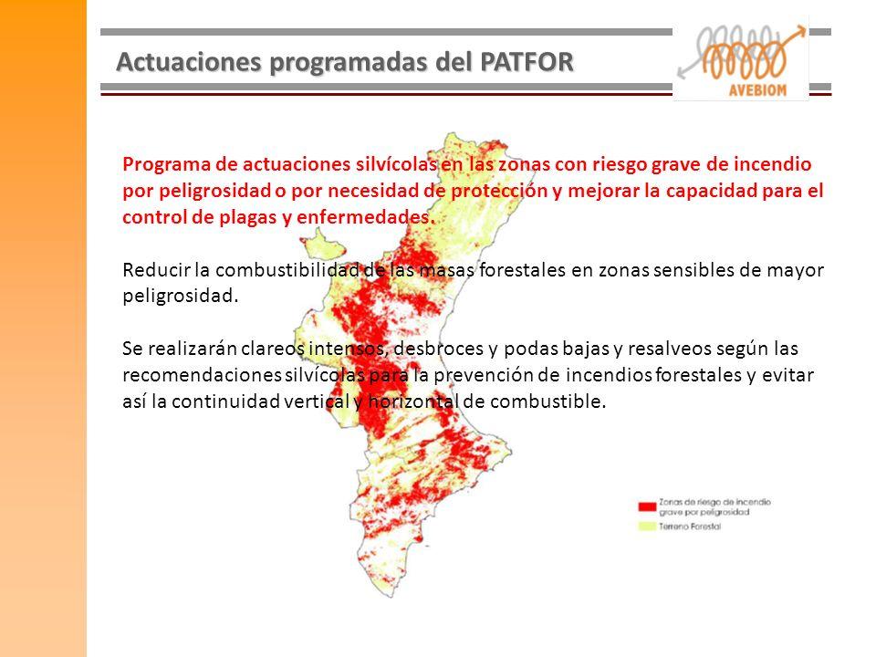 Actuaciones programadas del PATFOR