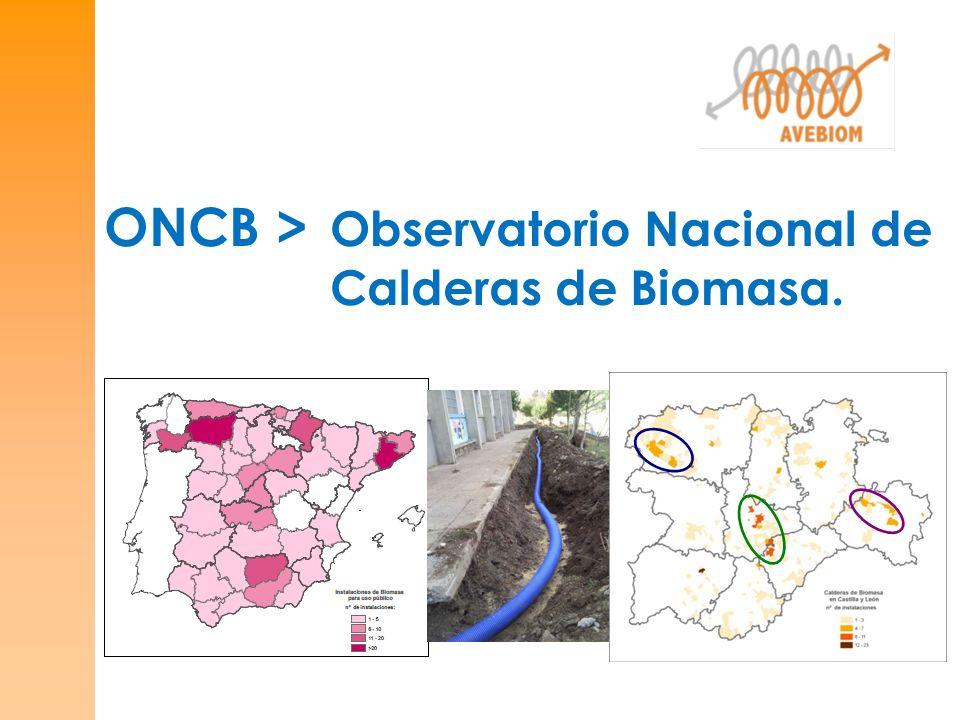 ONCB > Observatorio Nacional de Calderas de Biomasa.