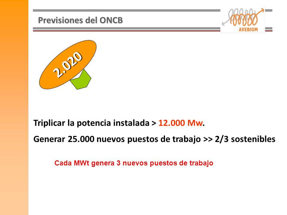 Previsiones del ONCB 2.020. Triplicar la potencia instalada > 12.000 Mw. Generar 25.000 nuevos puestos de trabajo >> 2/3 sostenibles.