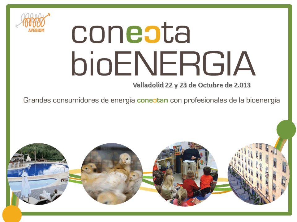 Valladolid 22 y 23 de Octubre de 2.013