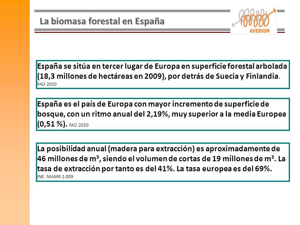 La biomasa forestal en España