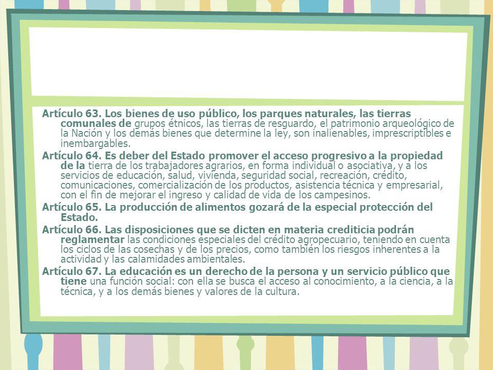 Artículo 63.