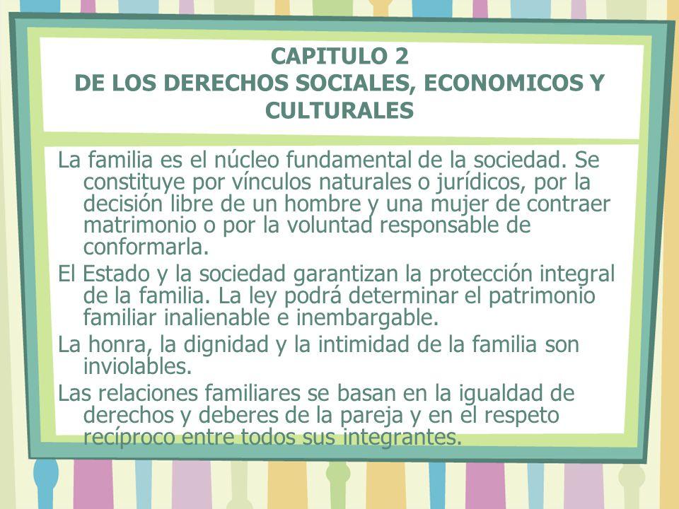 CAPITULO 2 DE LOS DERECHOS SOCIALES, ECONOMICOS Y CULTURALES