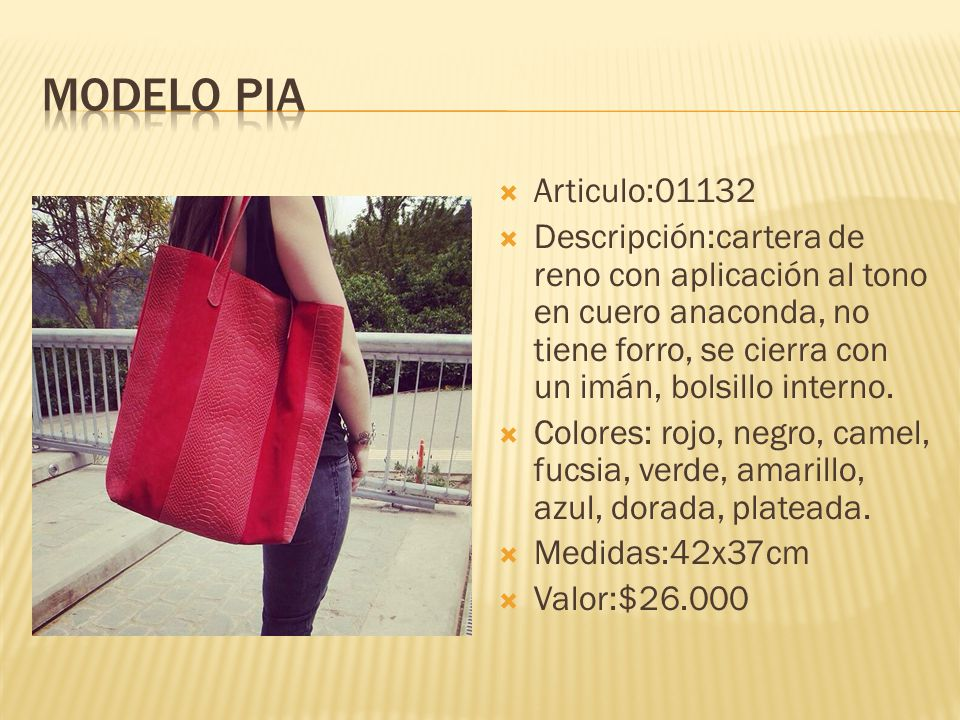 Modelo pia Articulo:01132.