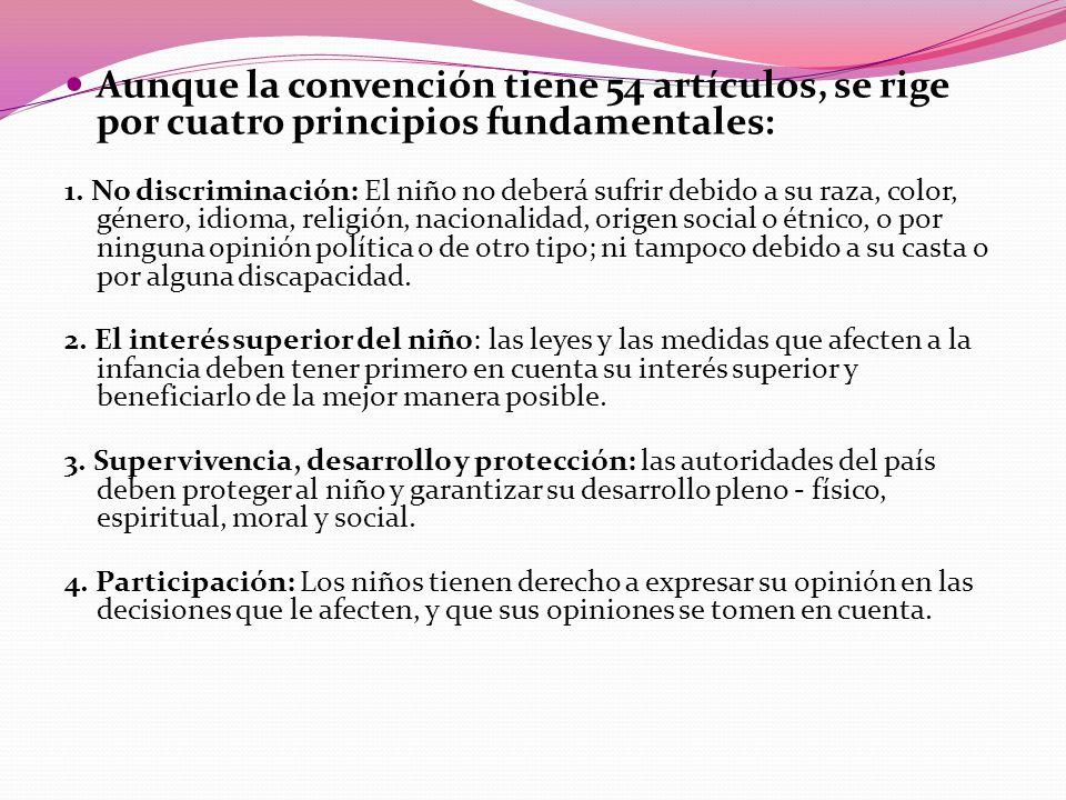 Aunque la convención tiene 54 artículos, se rige por cuatro principios fundamentales: