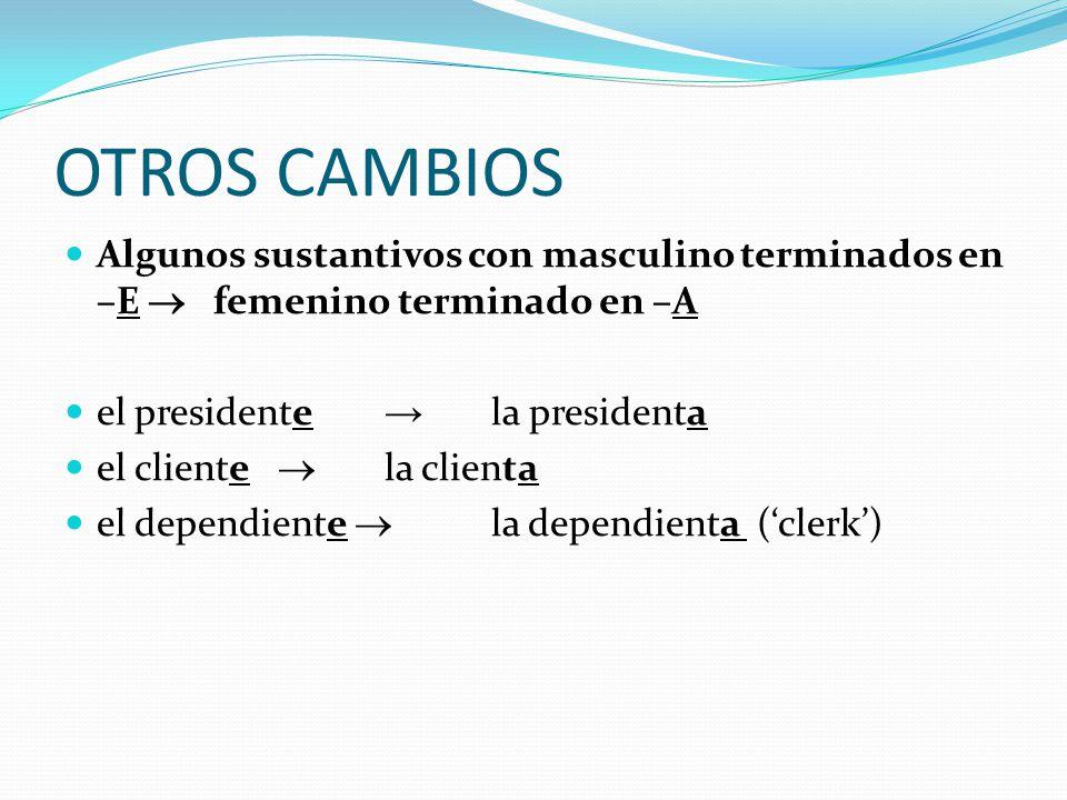 OTROS CAMBIOS Algunos sustantivos con masculino terminados en –E  femenino terminado en –A. el presidente → la presidenta.