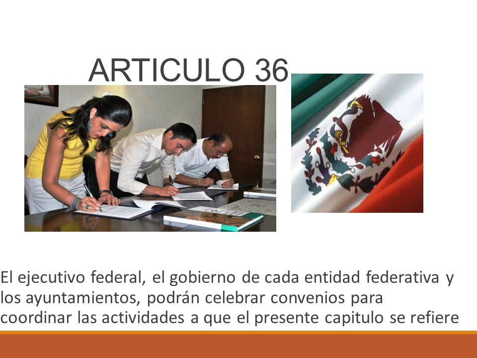 ARTICULO 36