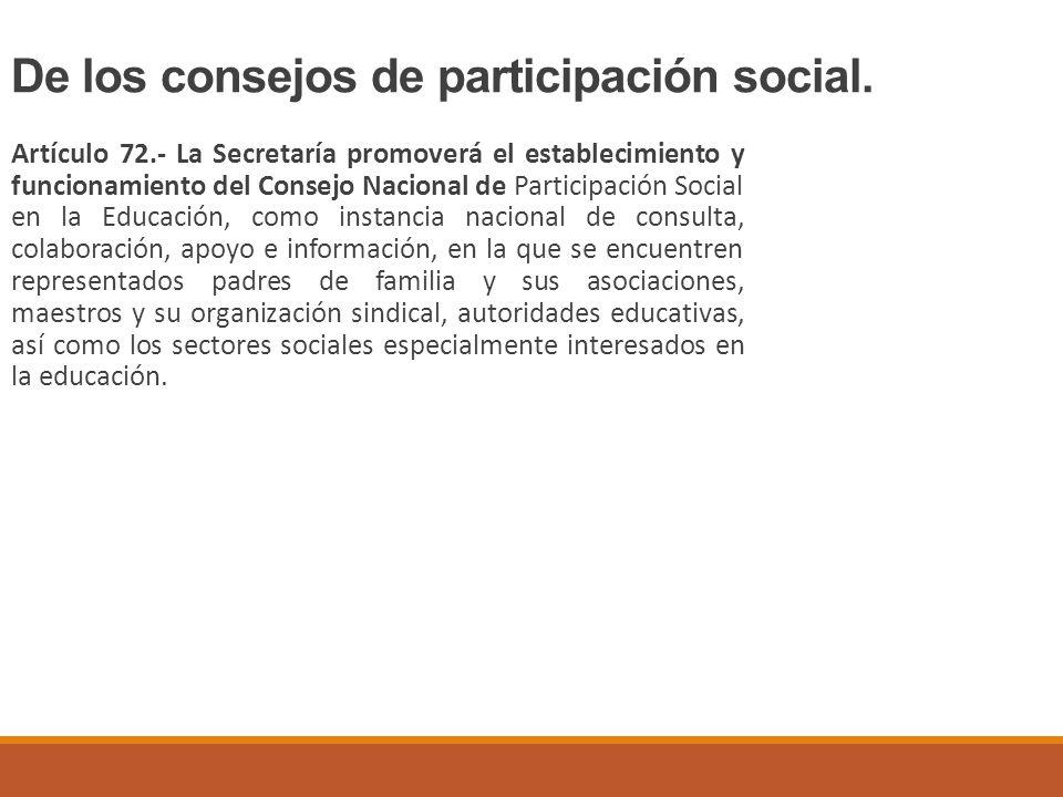 De los consejos de participación social.