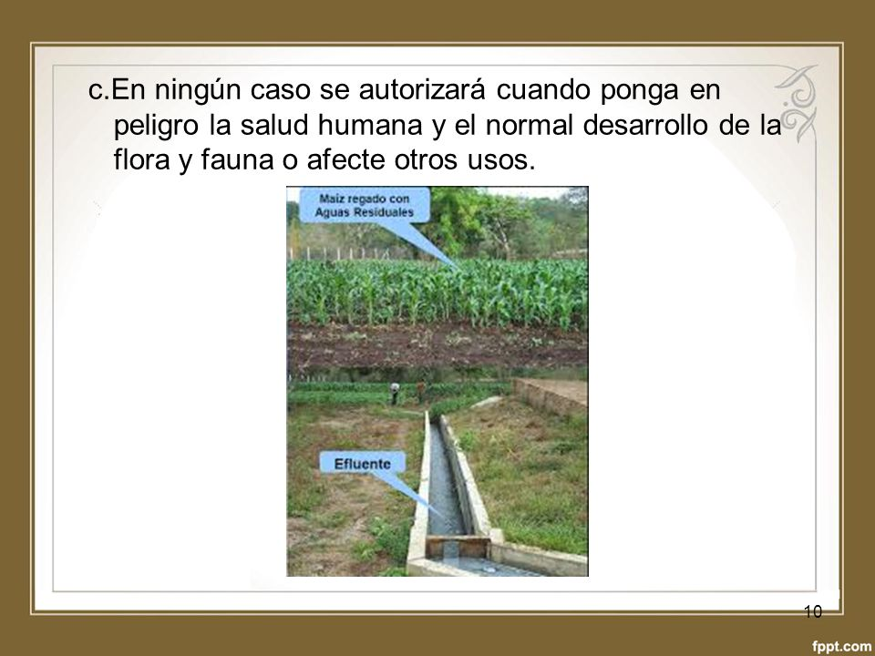 c.En ningún caso se autorizará cuando ponga en peligro la salud humana y el normal desarrollo de la flora y fauna o afecte otros usos.