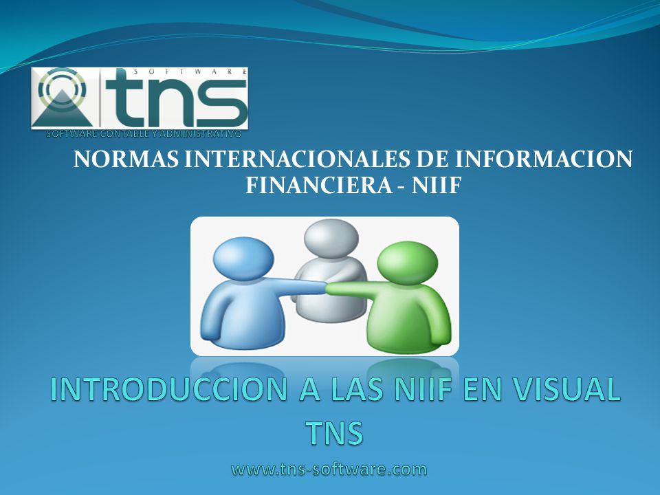 INTRODUCCION A LAS NIIF EN VISUAL TNS