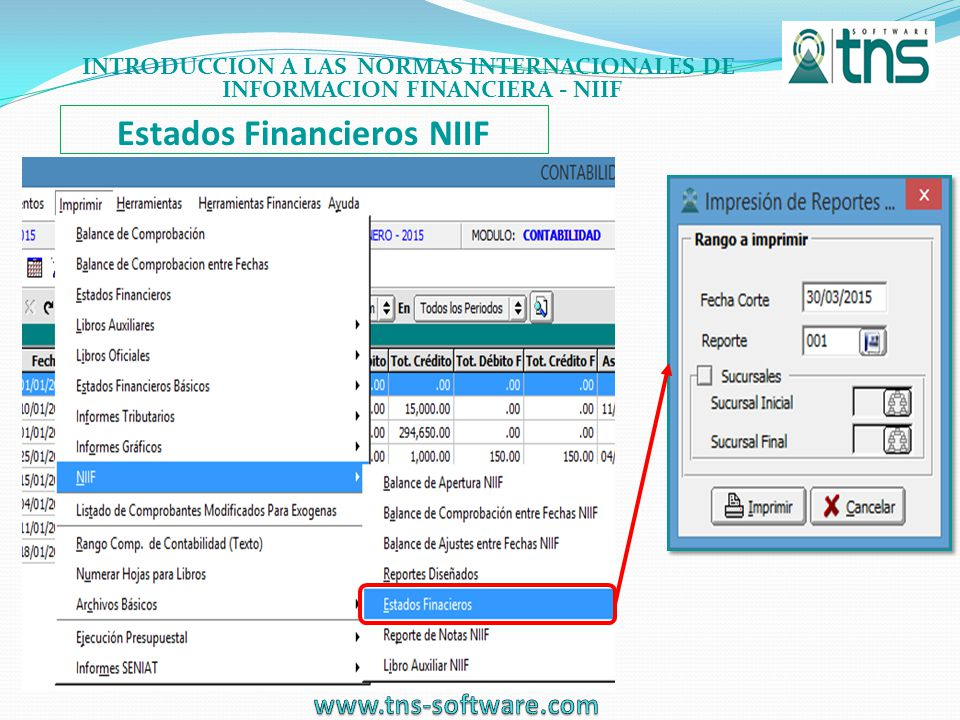 Estados Financieros NIIF