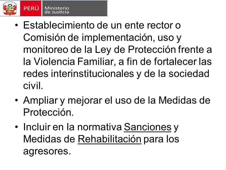Establecimiento de un ente rector o Comisión de implementación, uso y monitoreo de la Ley de Protección frente a la Violencia Familiar, a fin de fortalecer las redes interinstitucionales y de la sociedad civil.