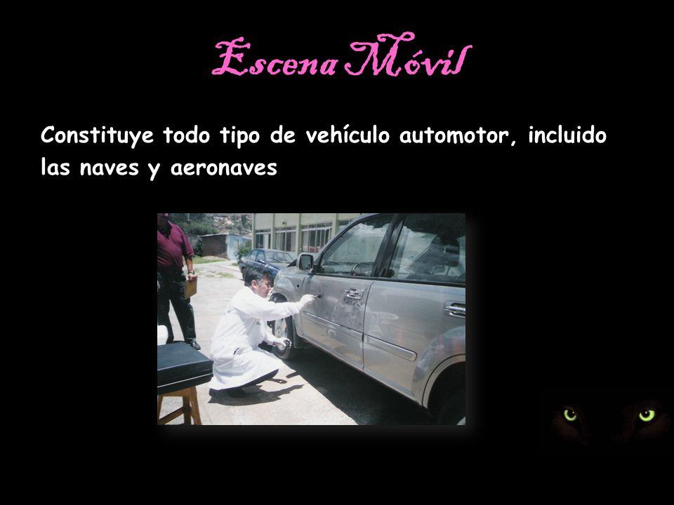 Escena Móvil Constituye todo tipo de vehículo automotor, incluido las naves y aeronaves