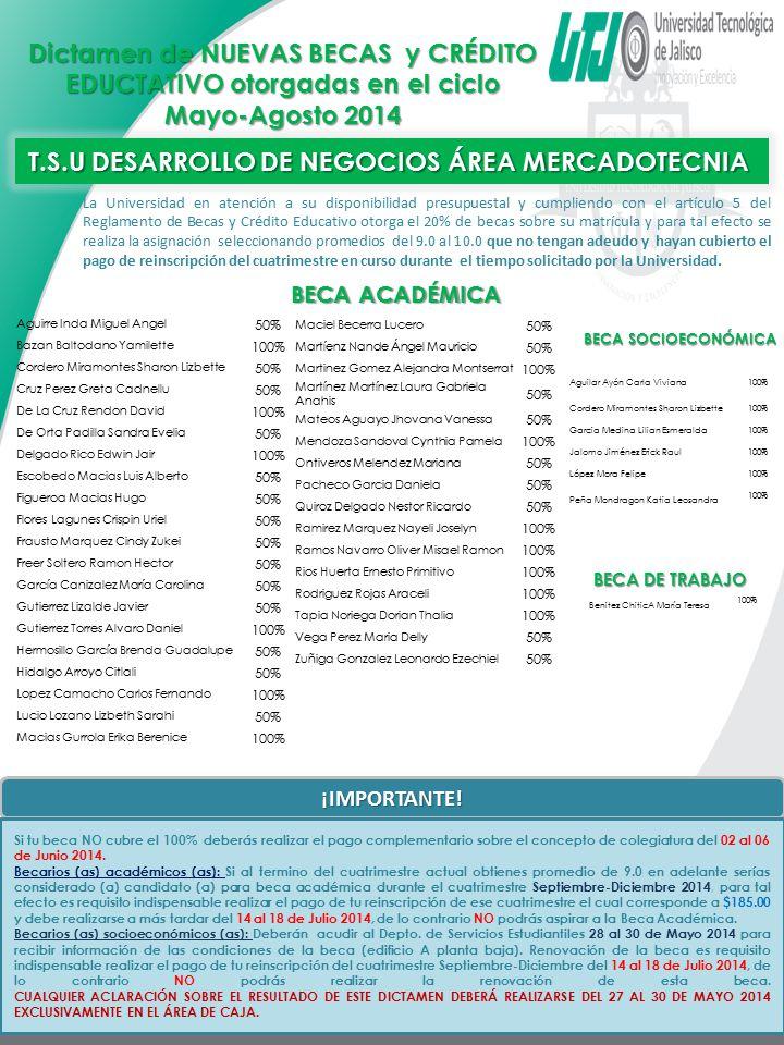 T.S.U DESARROLLO DE NEGOCIOS ÁREA MERCADOTECNIA