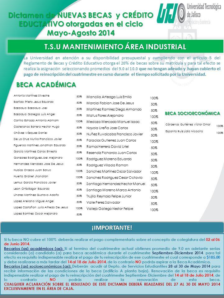T.S.U MANTENIMIENTO ÁREA INDUSTRIAL
