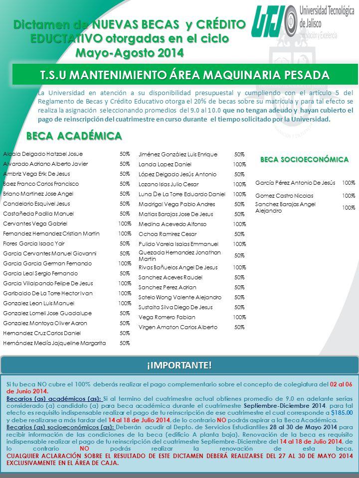 T.S.U MANTENIMIENTO ÁREA MAQUINARIA PESADA
