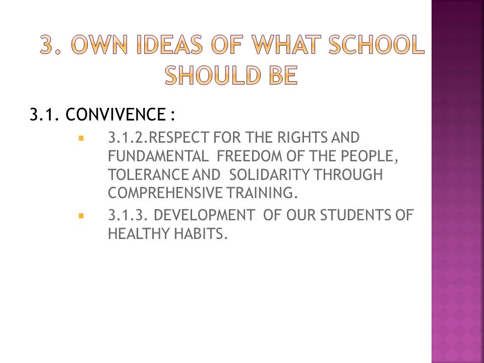 3. OWN IDEAS OF WHAT SCHOOL SHOULD BE