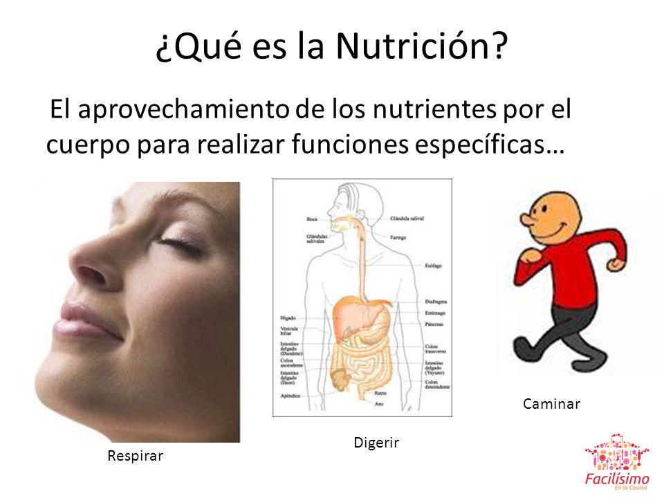 ¿Qué es la Nutrición El aprovechamiento de los nutrientes por el cuerpo para realizar funciones específicas…