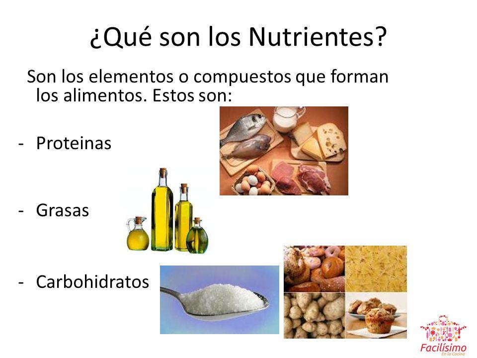 ¿Qué son los Nutrientes