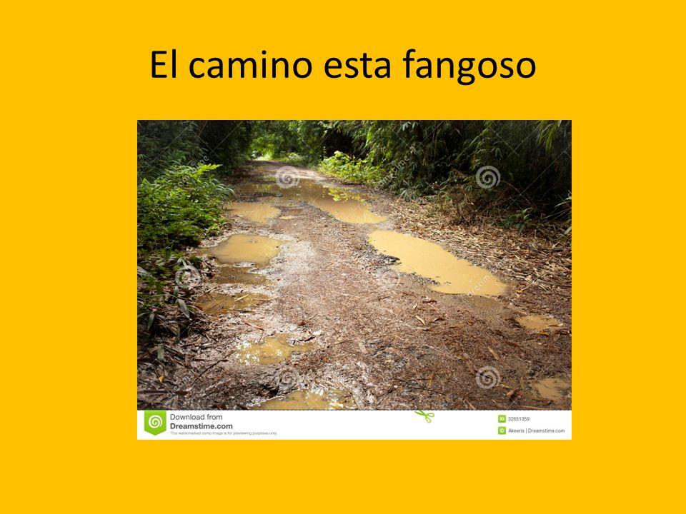 El camino esta fangoso