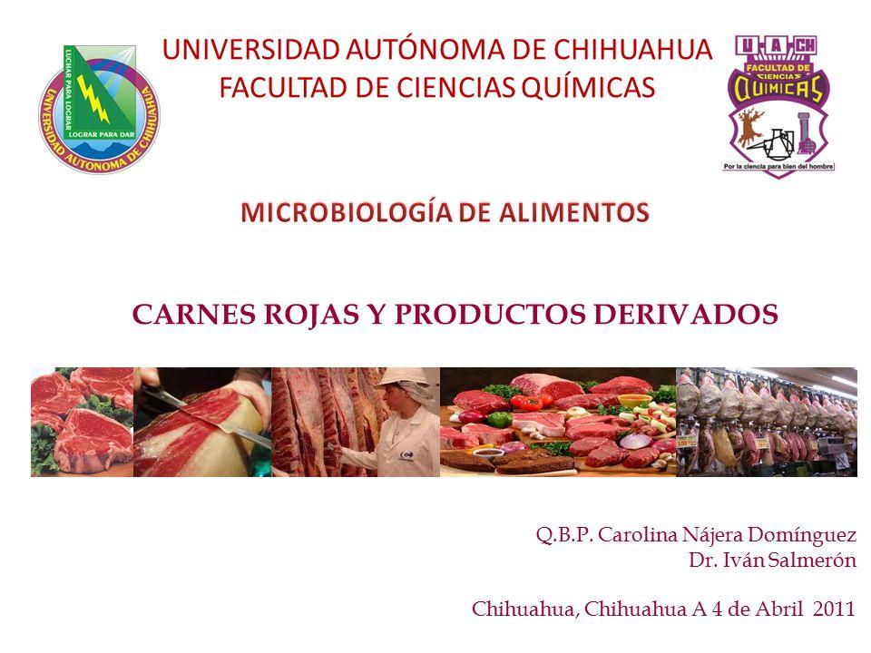 CARNES ROJAS Y PRODUCTOS DERIVADOS