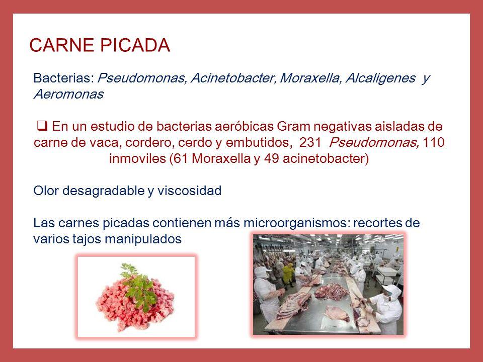 CARNE PICADA Bacterias: Pseudomonas, Acinetobacter, Moraxella, Alcaligenes y Aeromonas.