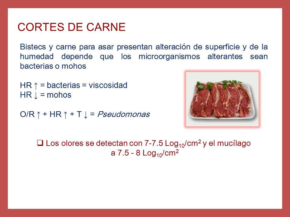 Los olores se detectan con 7-7.5 Log10/cm2 y el mucílago