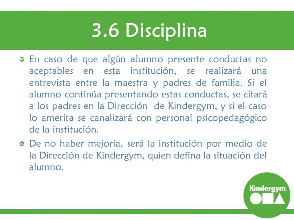 3.6 Disciplina