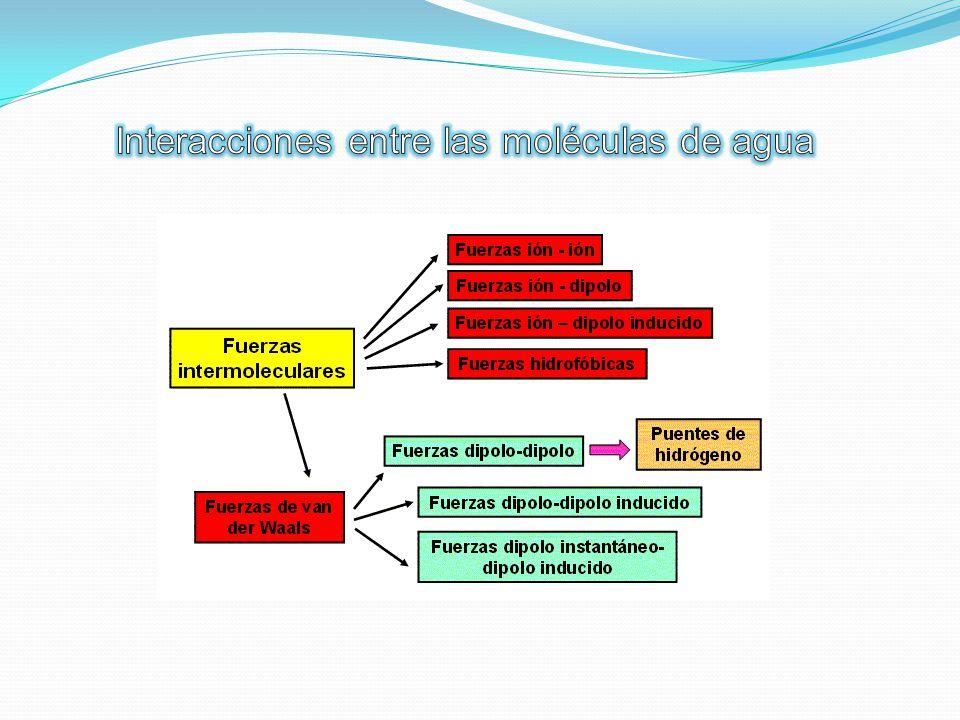 Interacciones entre las moléculas de agua