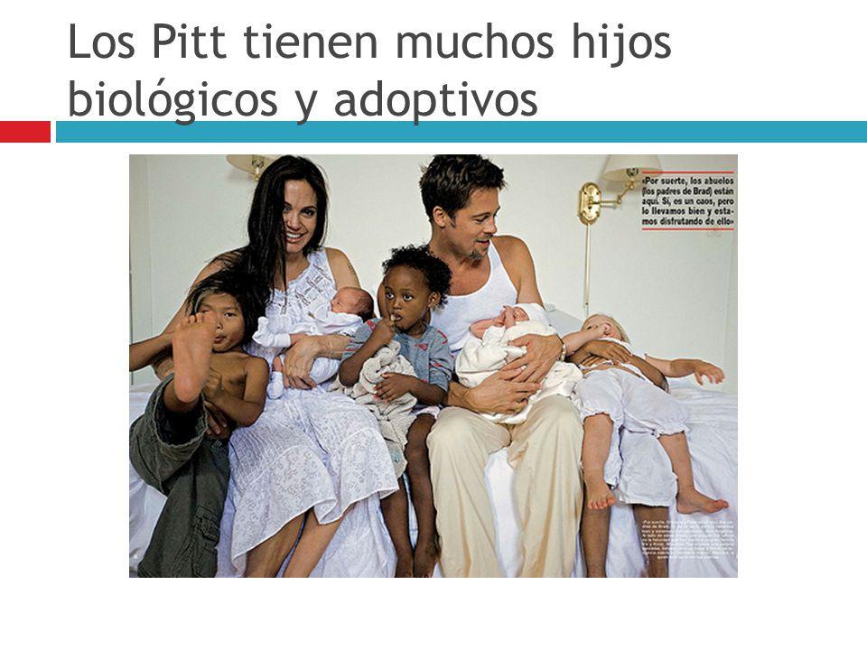 Los Pitt tienen muchos hijos biológicos y adoptivos