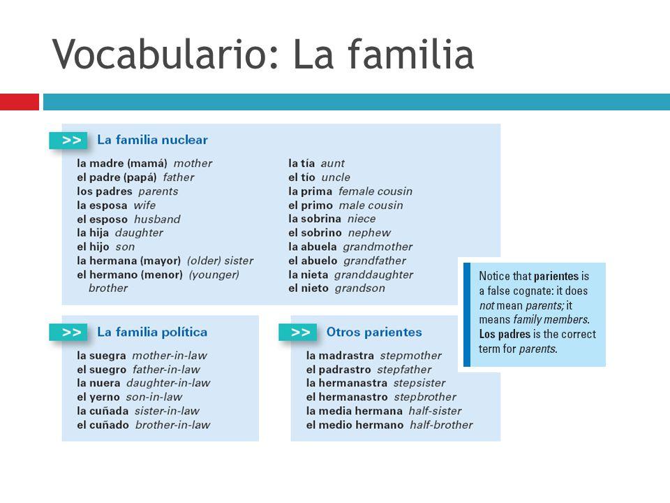 Vocabulario: La familia
