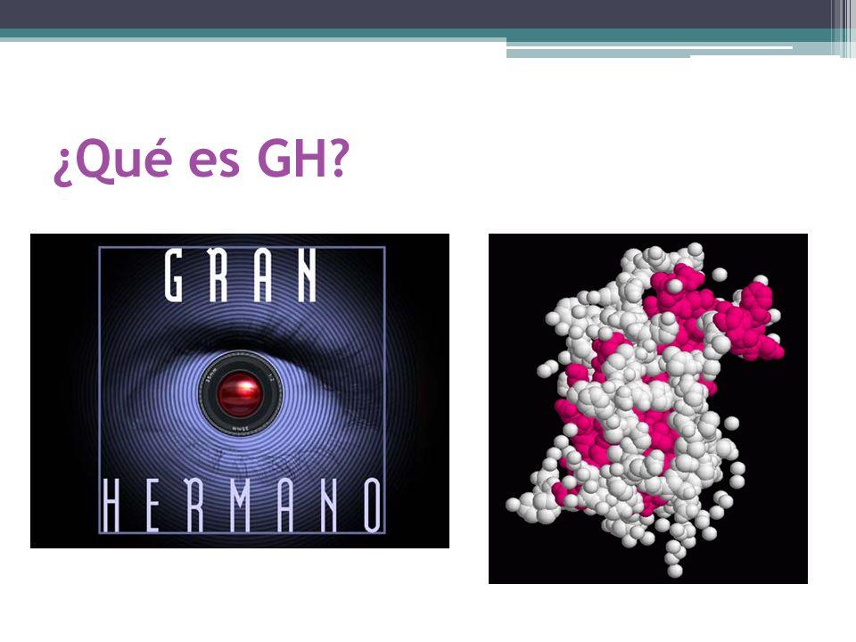 ¿Qué es GH