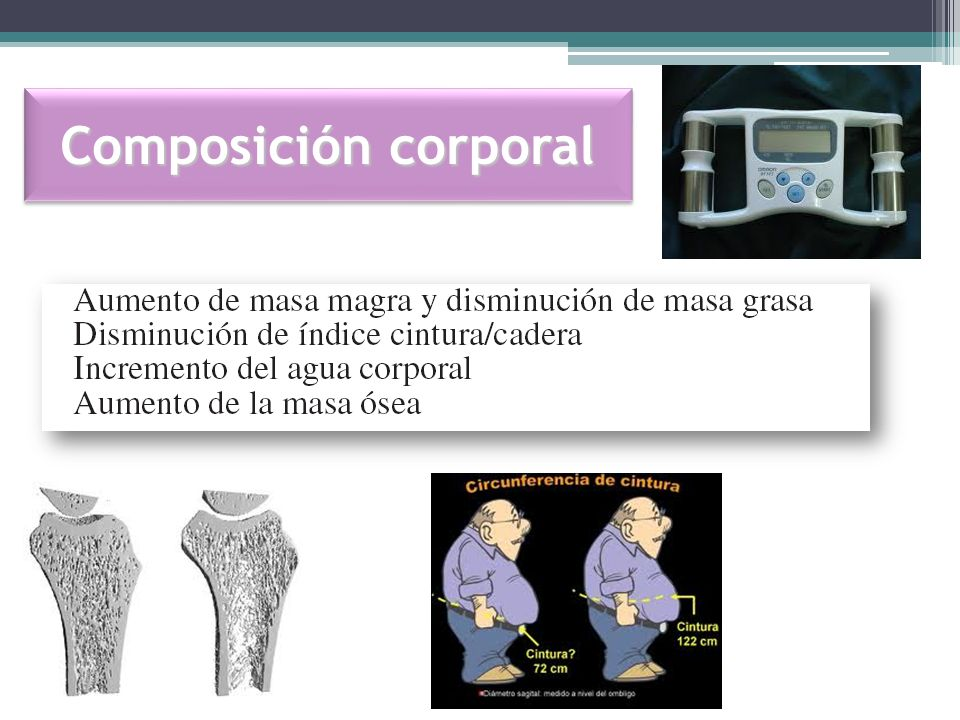 Composición corporal