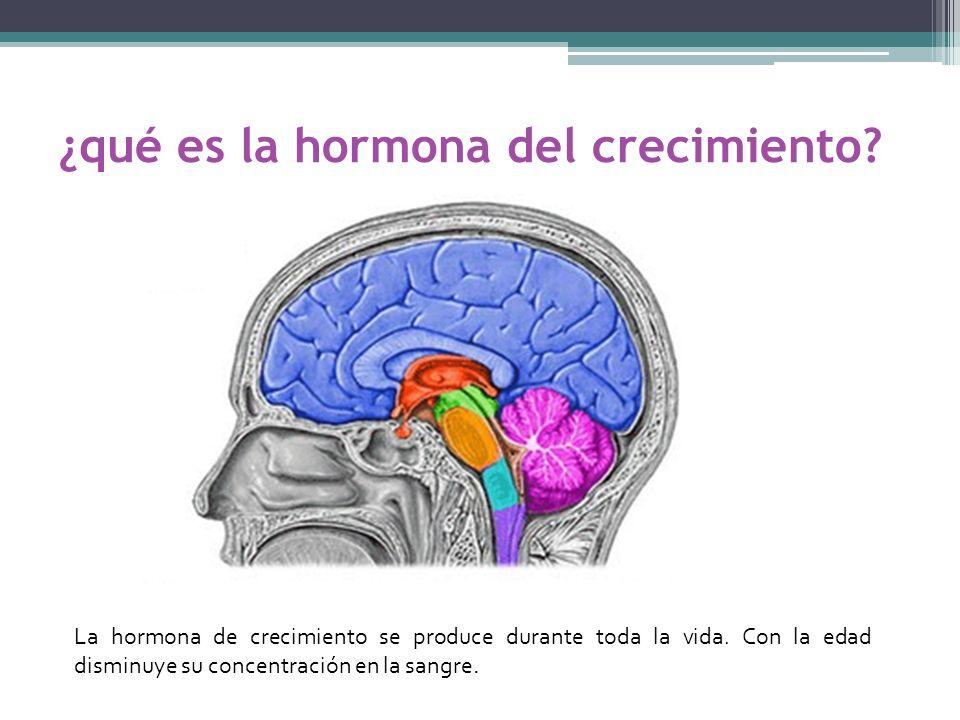 ¿qué es la hormona del crecimiento