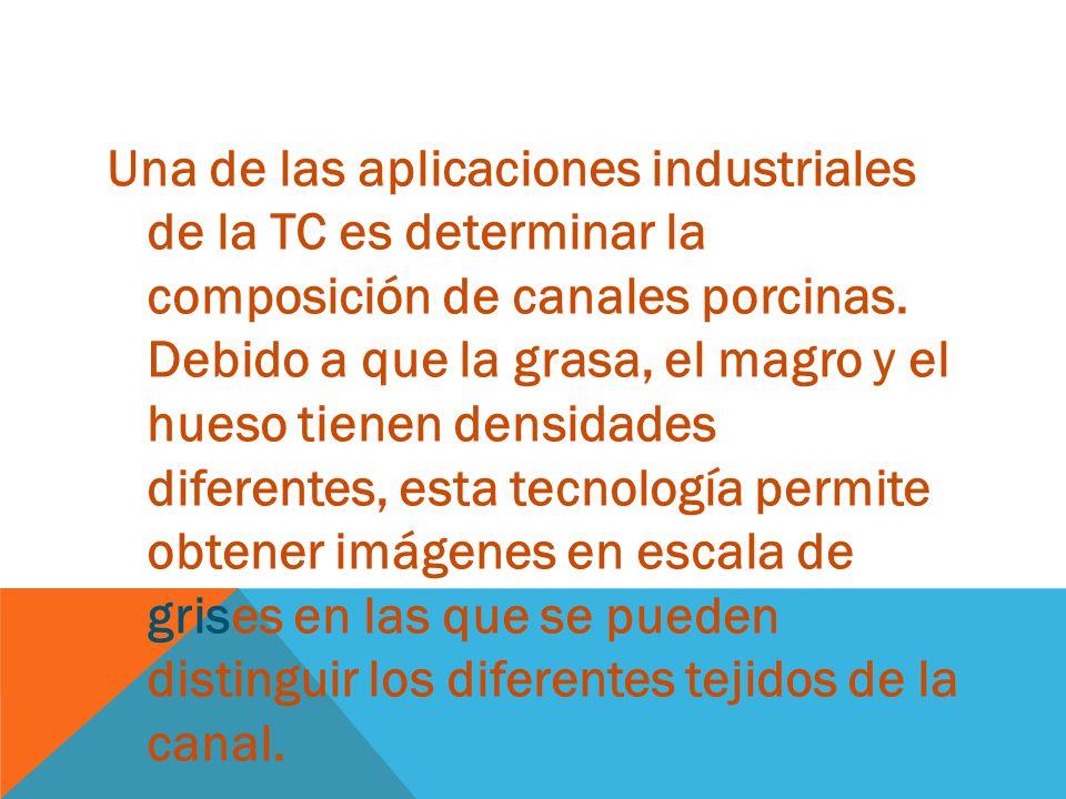 Una de las aplicaciones industriales de la TC es determinar la composición de canales porcinas.