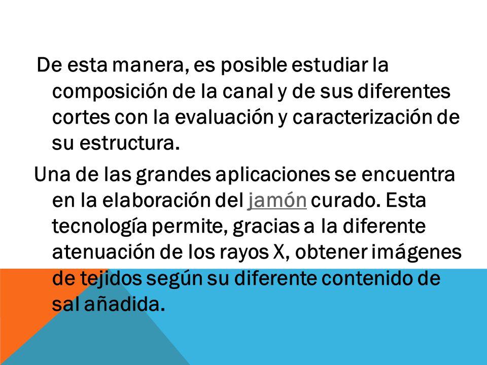 De esta manera, es posible estudiar la composición de la canal y de sus diferentes cortes con la evaluación y caracterización de su estructura.