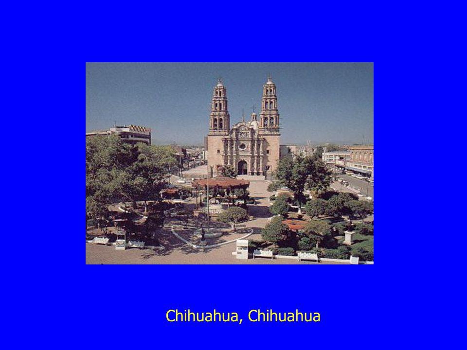 Chihuahua, Chihuahua