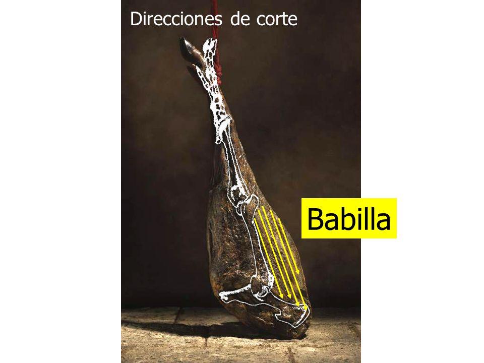 Direcciones de corte Babilla