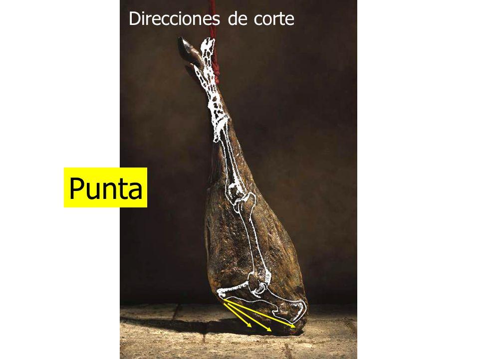 Direcciones de corte Punta