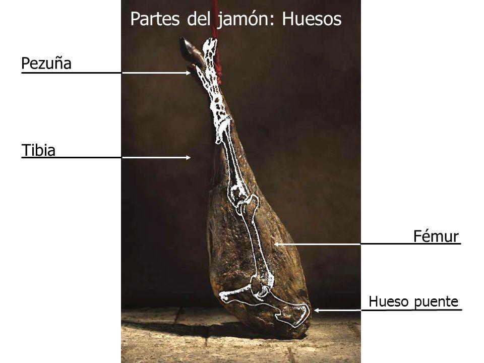 Partes del jamón: Huesos