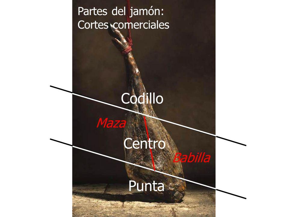 Partes del jamón: Cortes comerciales Codillo Maza Centro Babilla Punta