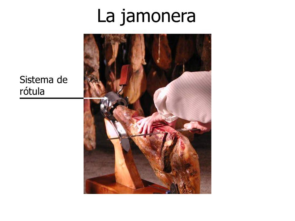 La jamonera Sistema de rótula