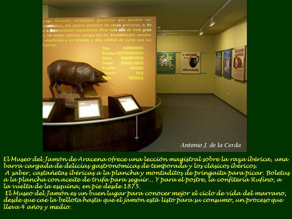 El Museo del Jamón de Aracena ofrece una lección magistral sobre la raza ibérica, una barra cargada de delicias gastronómicas de temporada y los clásicos ibéricos.