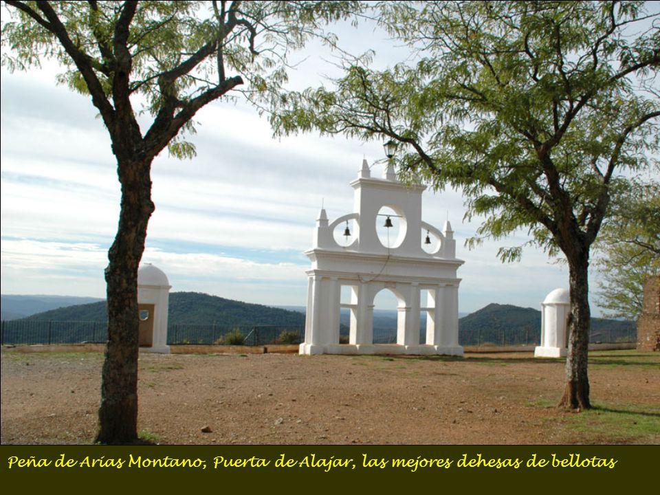 Peña de Arias Montano, Puerta de Alajar, las mejores dehesas de bellotas