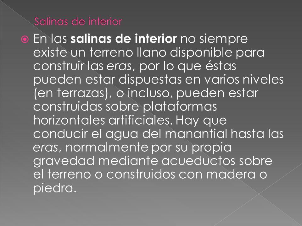 Salinas de interior
