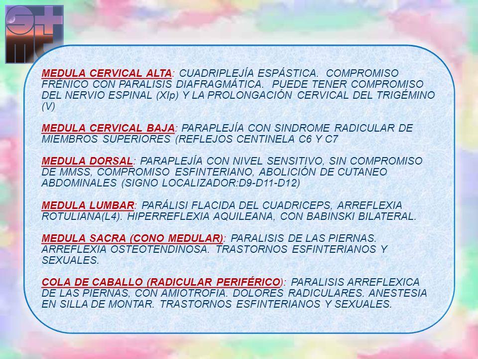 MEDULA CERVICAL ALTA: CUADRIPLEJÍA ESPÁSTICA